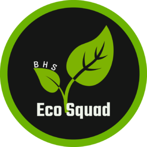 Image result for bhs eco squad